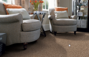 flooring-america-carpeting