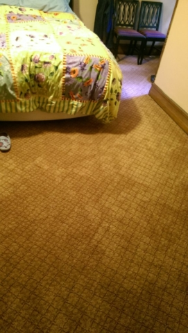 master-bedroom-after-installation-of-new-carpeting