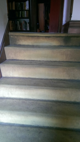staircase-with-thread-bare-worn-out-carpeting